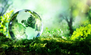 espaces verts urbains